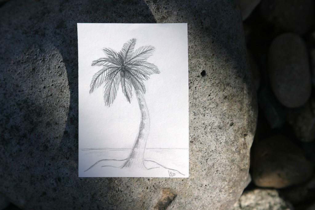 dailyATC 2 palm tree