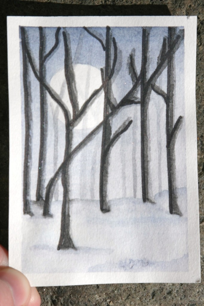 DailyATC14 forest